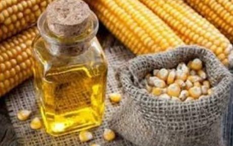 Refined Corn (Maize) Oil