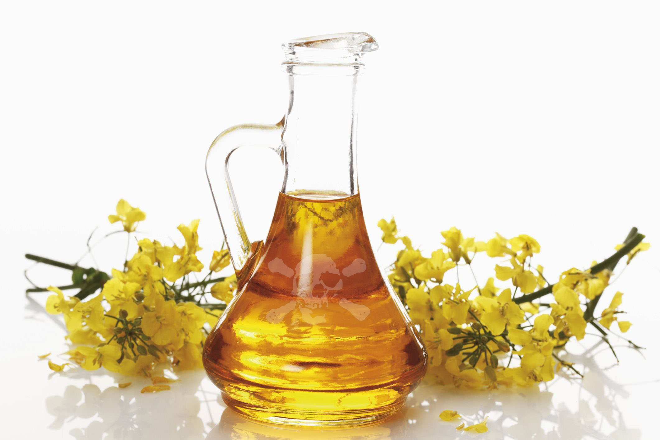 Canola Oil Canola Oil Canola Oil Canola Oil