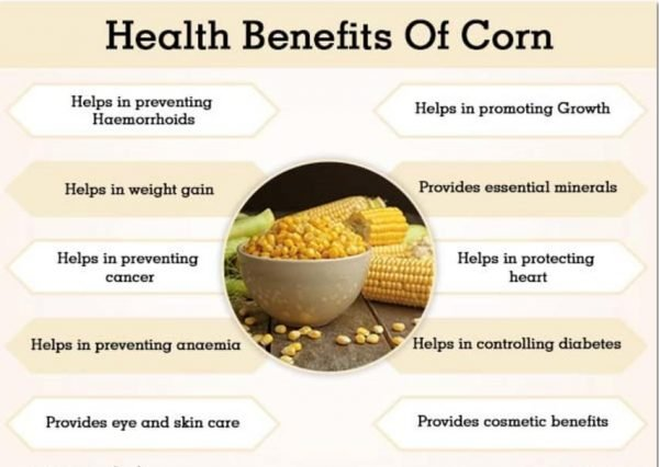 Benefits Of Corn Oil