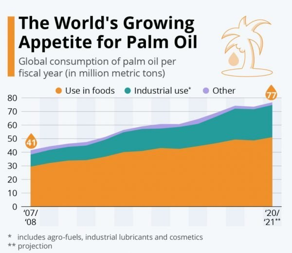 The World's Growing Appetite For Palm Oil