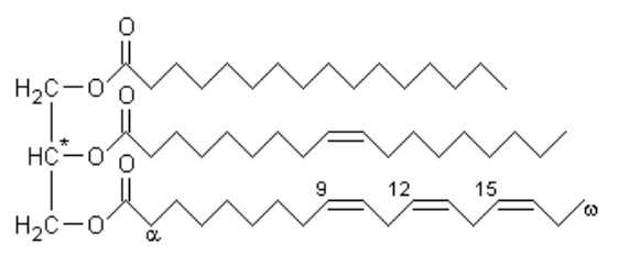 Typical molecule of soybean oil