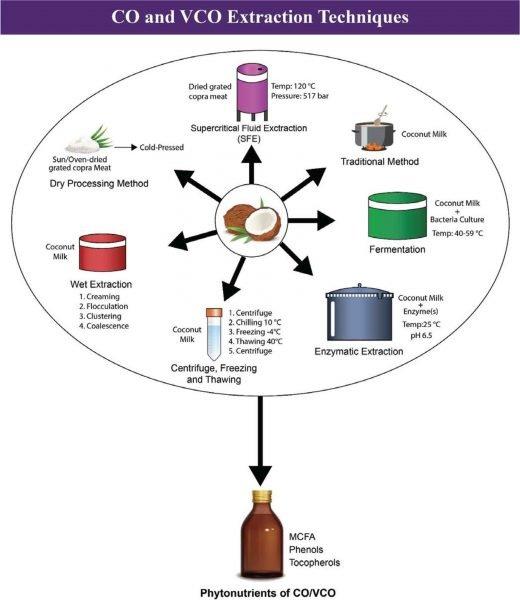 Coconut Oil (CO) and Virgin Coconut Oil (VCO) Extraction Technique