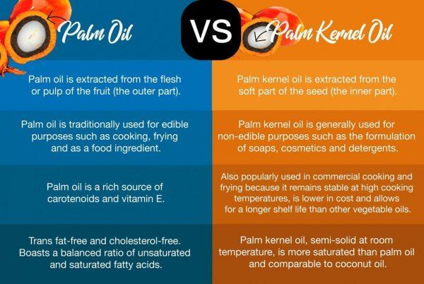Palm Oil VS Palm Kernel Oil