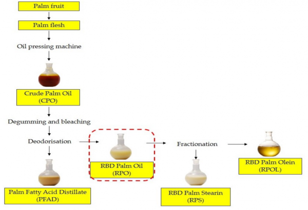 Process of Palm Oil