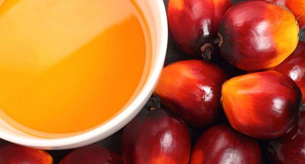 Crude Palm Kernel Oil (CPKO)
